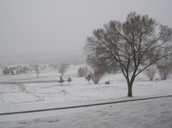 Snow first fell on Friday night, making the resort a winter wonderland in March./ photo by Naomi Hirahara